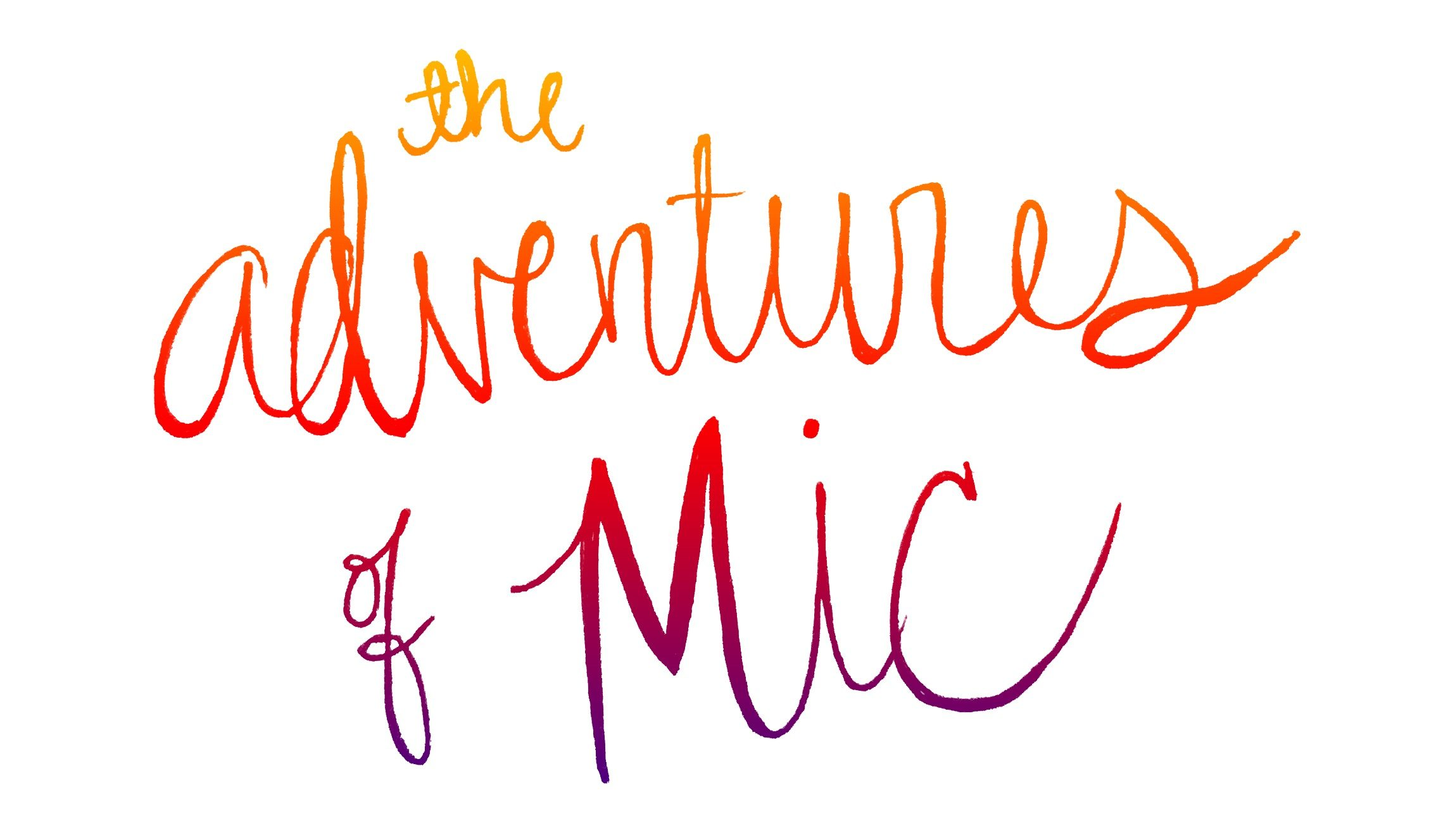 The Adventures of Mic
